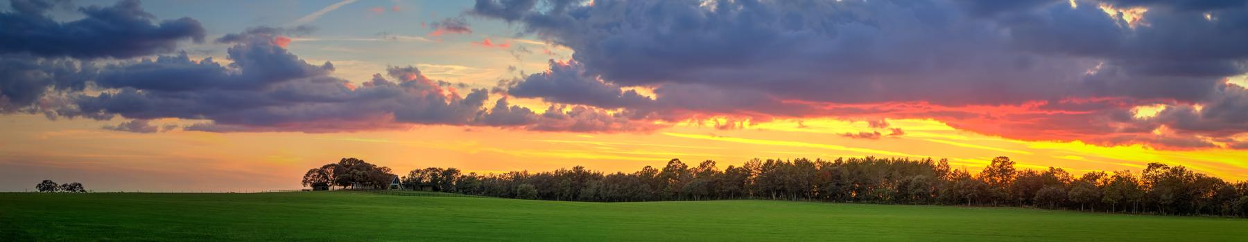 Green Pasture Grassy Farm Land Gainesville Florida