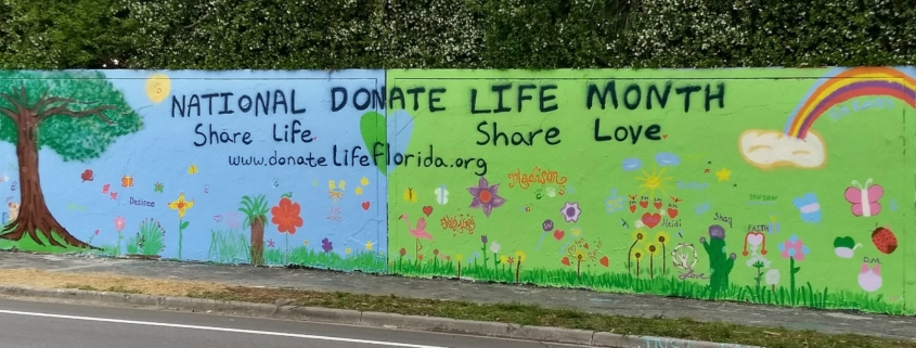 Donate Life Florida Wall Mural. Gainesville Florida 34th Street Wall.