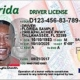 Image of a Class E Florida Driver License